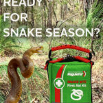 Are you ready for snake season?