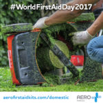 World First Aid Day 2017 - Accidents in the Home